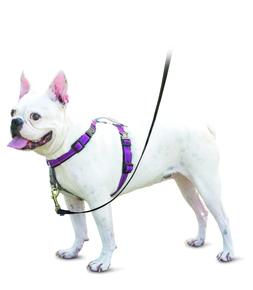 PetSafe 3 in1  Dog Harness No Pull Fully Easy Adjustable