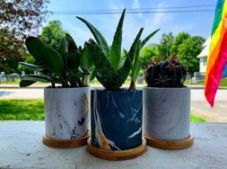 3 Inch Ceramic Succulent Planter Pots With Drainage Hole Set