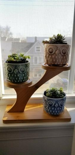 3 Mini Owl Ceramic Succulent Planter Pots With Drainage Hole