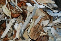 50 pieces of and bark crafts terrarium