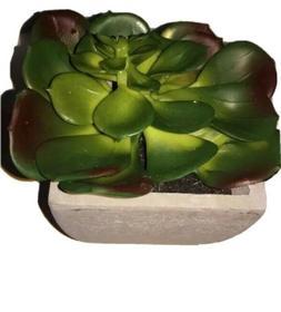 """Artificial Cactus in a clay White pot 5""""/15cm Small Plant su"""