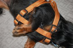 Brown Nylon Adjustable Pet Harness - 3/4 Inch width - w/Safe