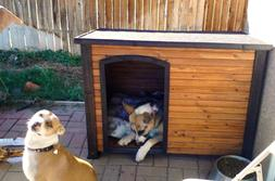 Dog Houses for Medium Dogs Pet Puppy Heavy Duty Solid Wood O