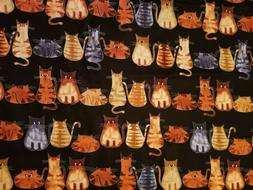 Fabric for Sewing Craft Quilt Mask SCRAP CATS BACK KITTY BLA