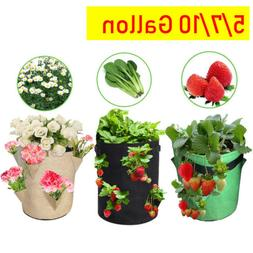 Fabric Plant Grow Bag Potato Strawberry Planter Bag For Outd