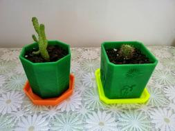 Gift pot for cactus and other small plants - 3D printing pla