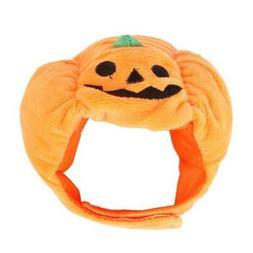 halloween costume pet cat pumpkin hat halloween