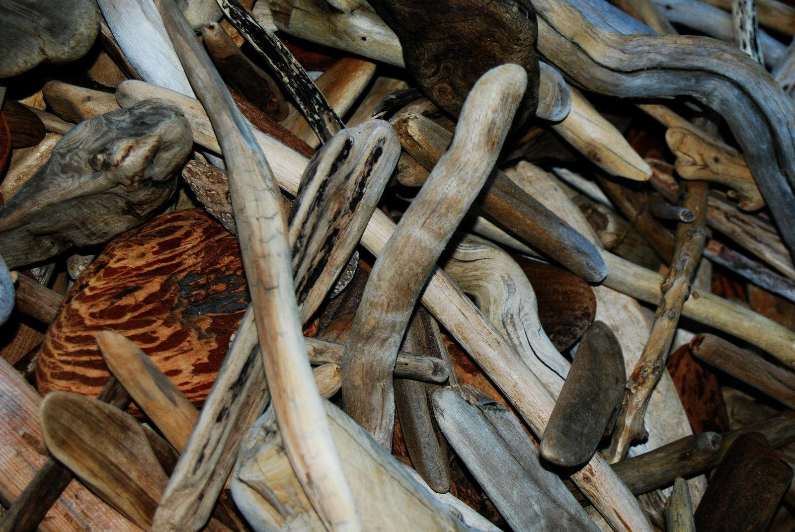 50+ Driftwood Terrarium Art