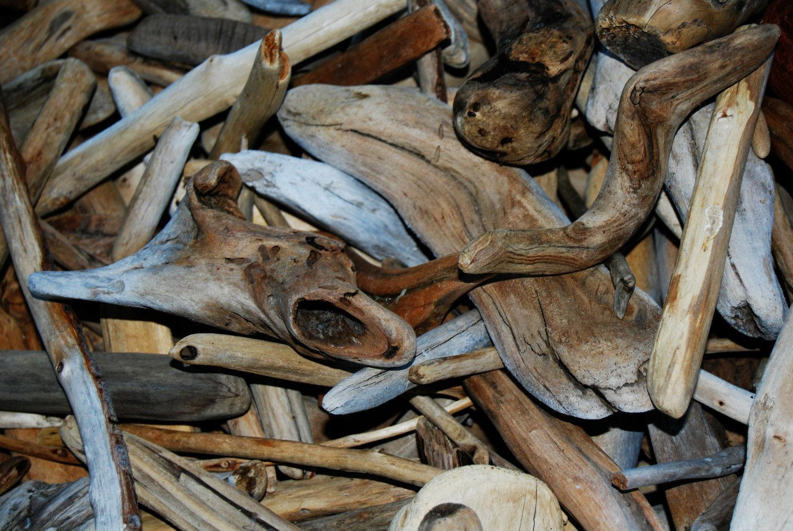 50+ Pieces Driftwood Crafts Terrarium Gardens Art