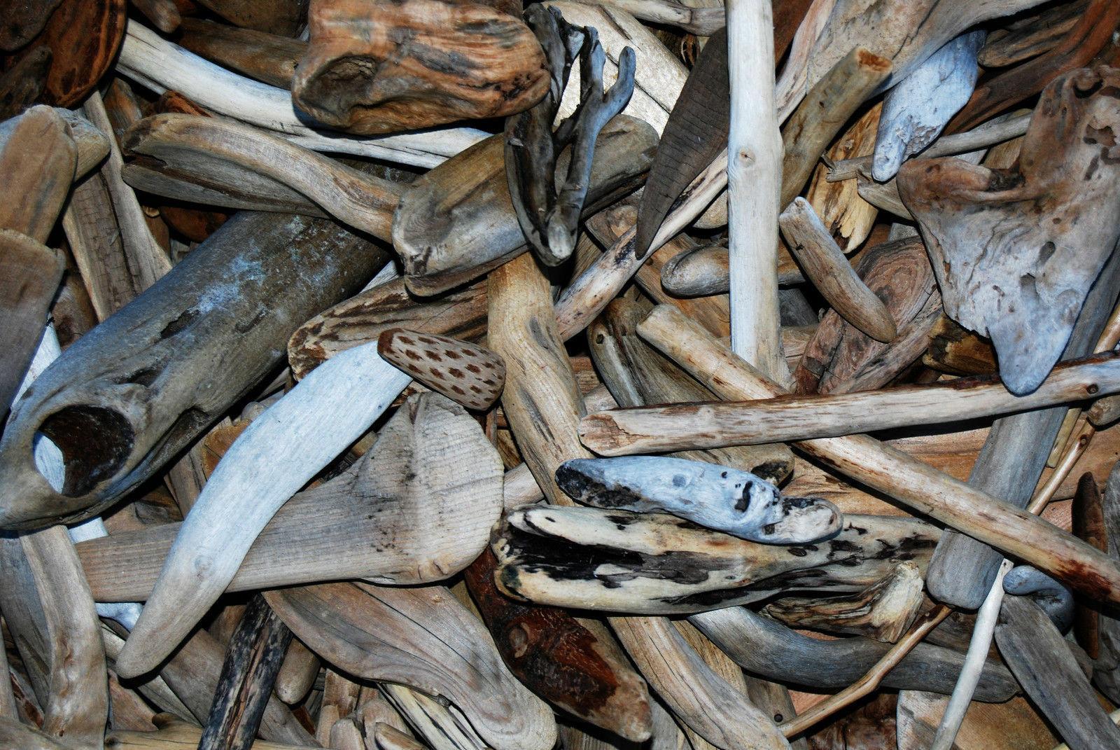 50+ Pieces Driftwood Bark Terrarium Art