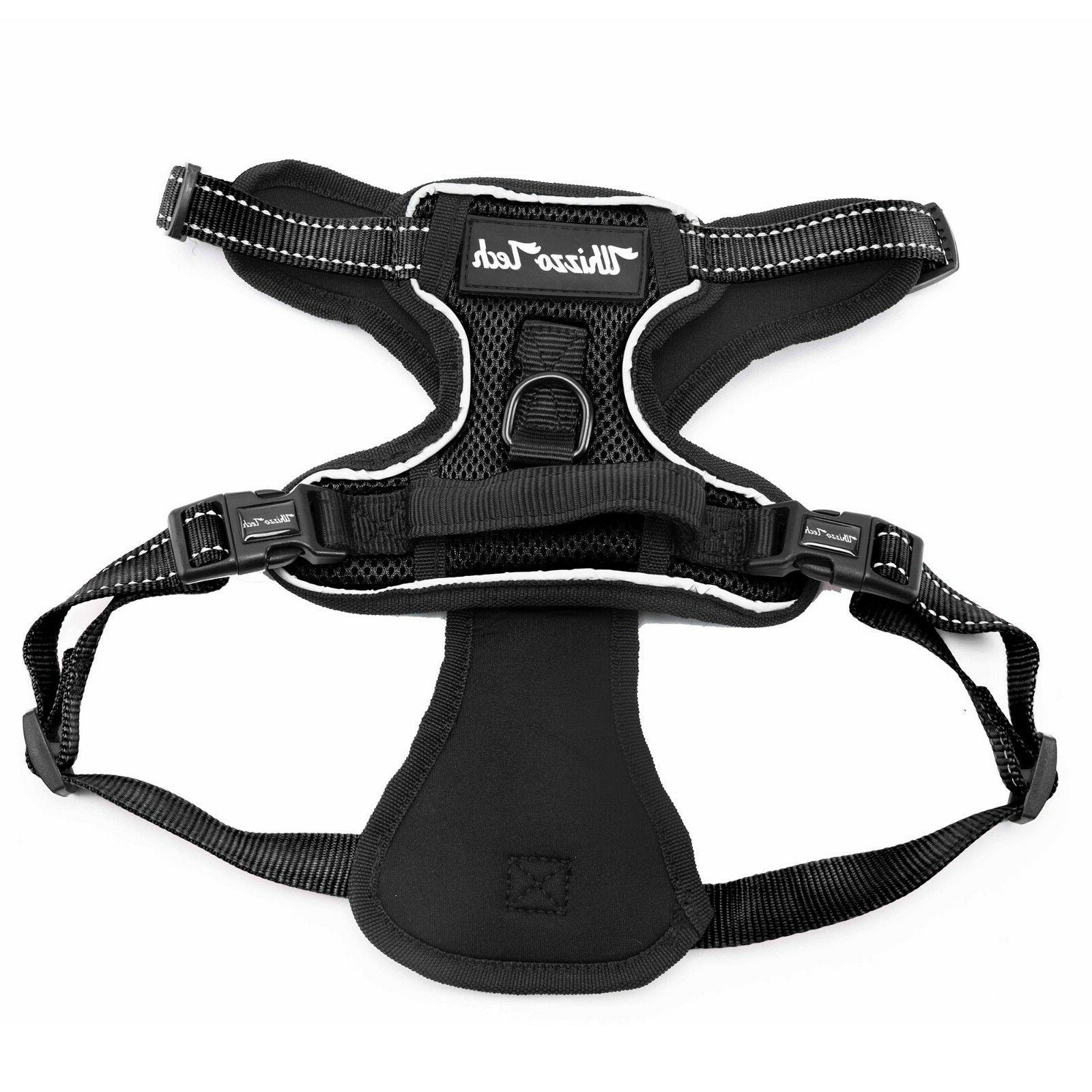 Dog Harness Harness Outdoor