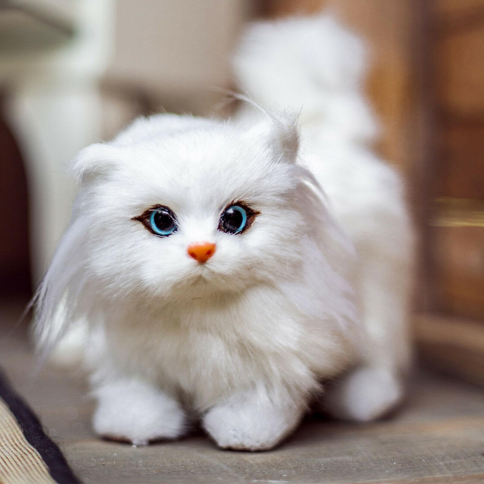 awsom pets white kitty