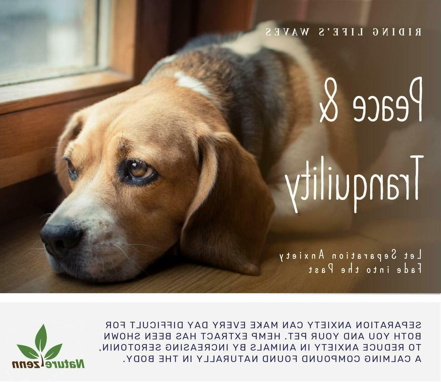 Beef Flavor for Dogs - Calming Drops Organic