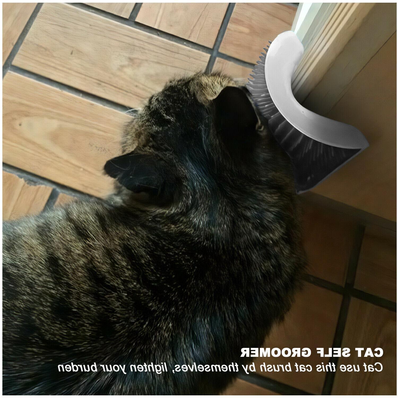 Cat Pet Brush Wall Massage Catnip US