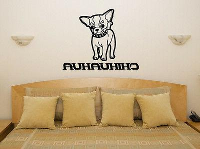 chihuahua puppy pet living room dining bedroom
