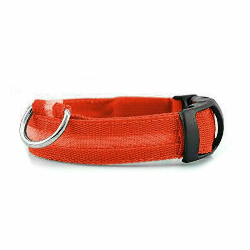 Dog Night Up Glow Adjustable Pets Safety USA