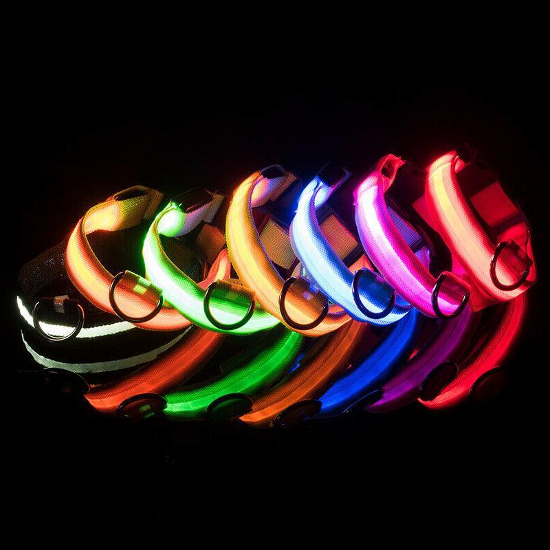 Dog LED Collar Blinking Night Glow USA