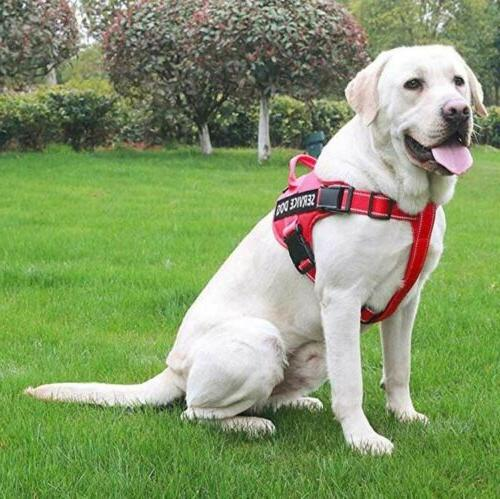 Dog Pet Pull Service Puppy Outdoor Walk Emotional Vest