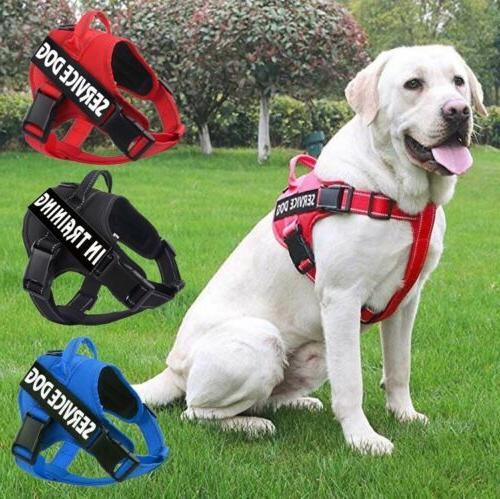 Dog Pet Outdoor Emotional Vest