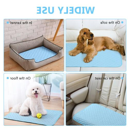 Dog Mat For Dog Comfort Chilly
