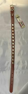 "COASTAL PET FANCY STUDDED LEATHER COLLAR BROWN 5/8"" BY 17""."