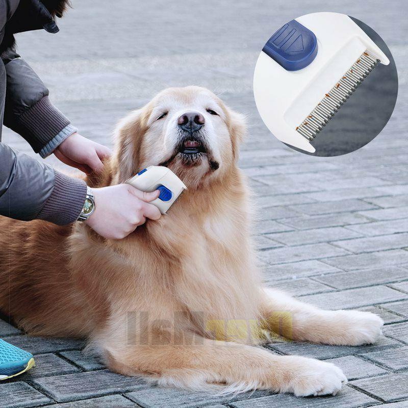 Professional Electric Cat Anti Flea Head Lice Brush