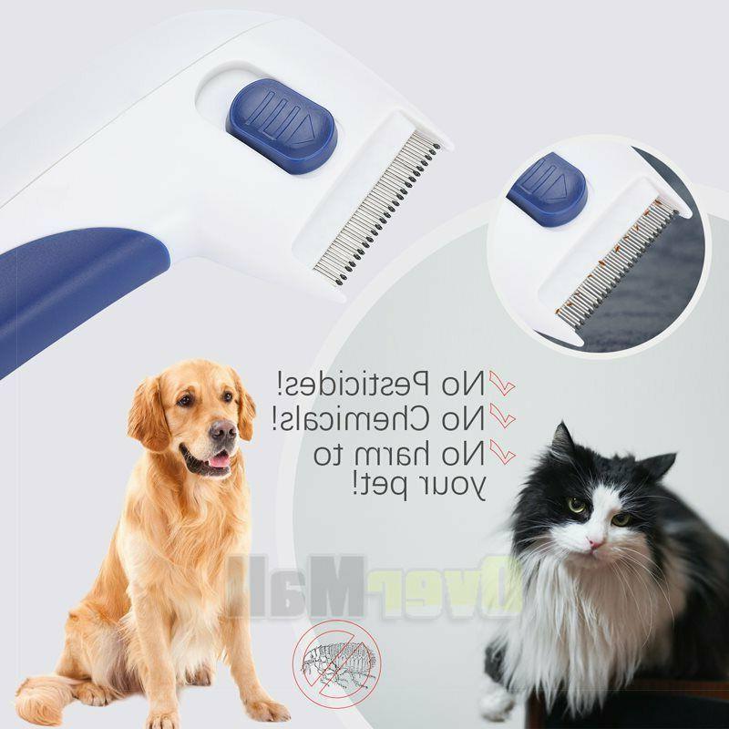 Professional Comb Dog Head Lice Brush