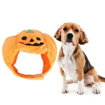 Halloween Pumpkin Hat Halloween Apparel Headwear