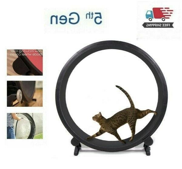 indoor cat running exercise wheel kitty training