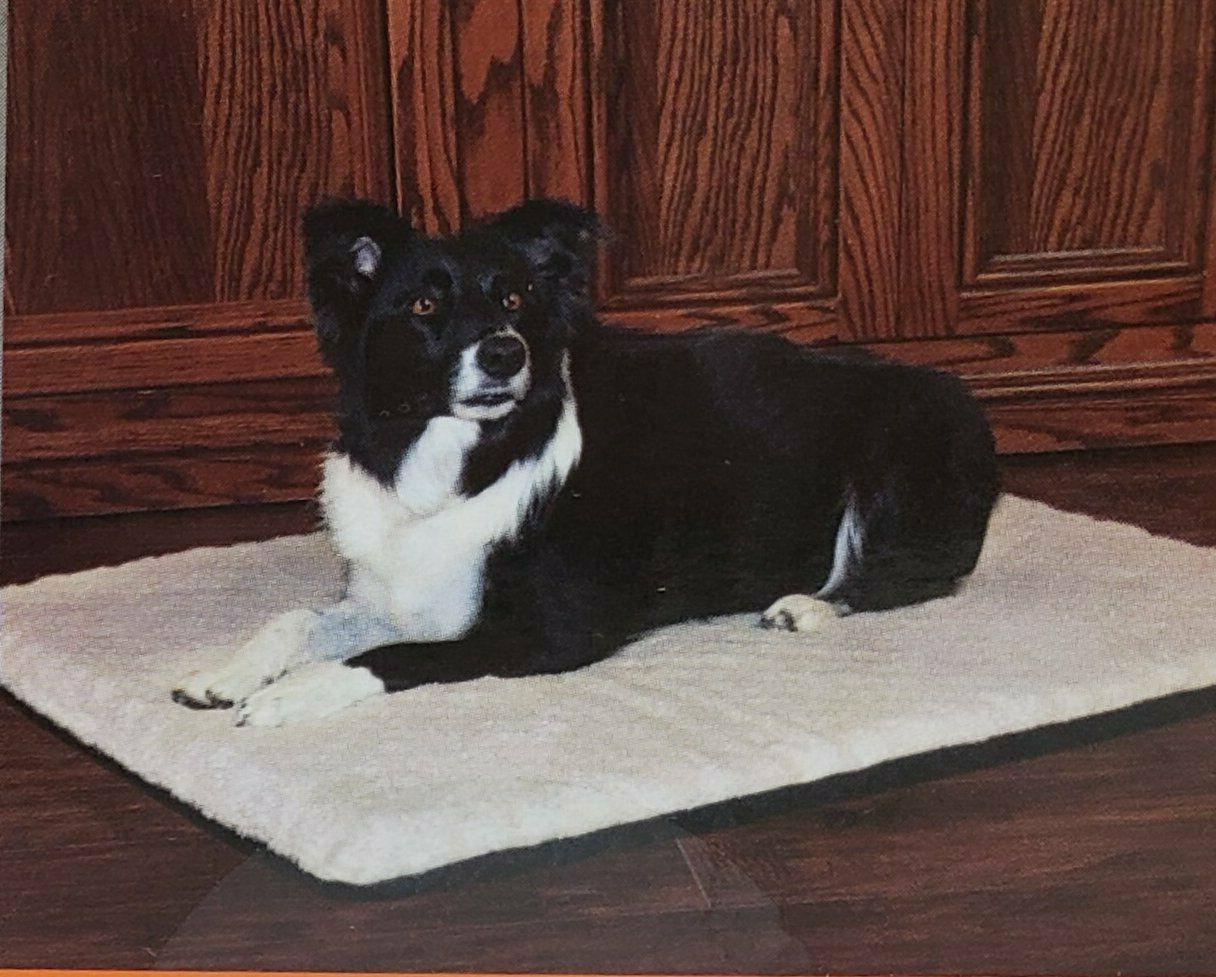 K&H Warmer Dog or Safe Electric Size