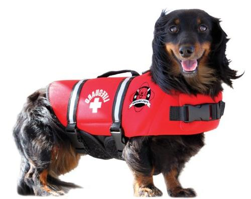 Paws Aboard Designer Doggy Jacket, Red by Aboard
