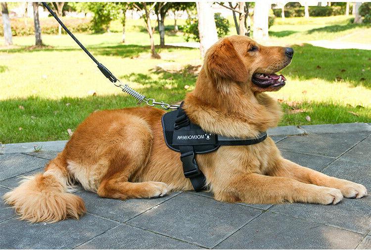 No Dog Pet Harness Dogs Reflective M Large
