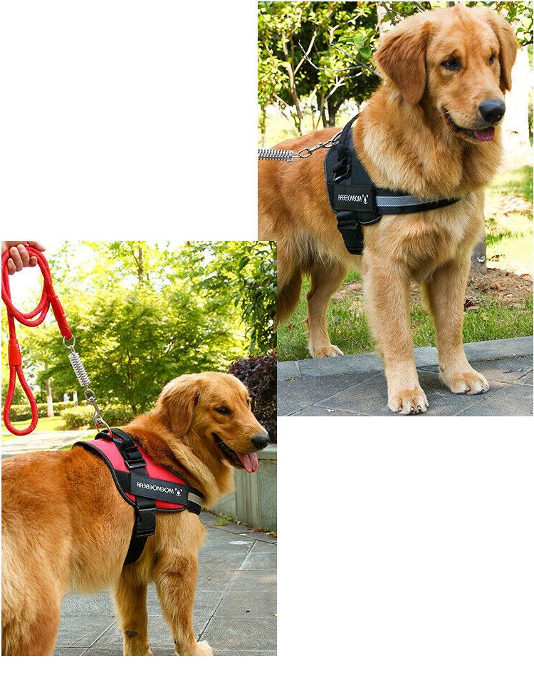 No Harness Adjustable Dogs Reflective S M