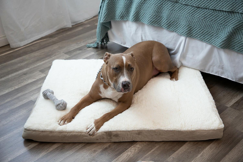 Orthopedic Dog Lounger Deluxe Large