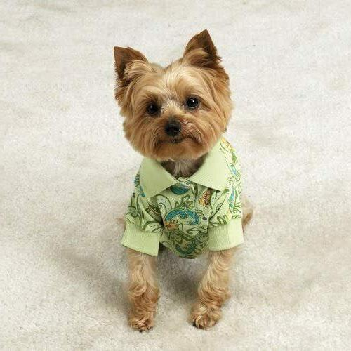 paisley polo shirt for dogs cats pets