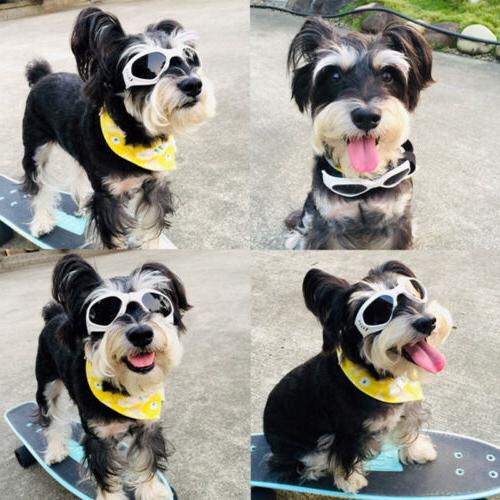 Pet Goggles Protection Sunglasses for