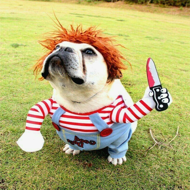 pet dog halloween chucky clothes dogs halloween