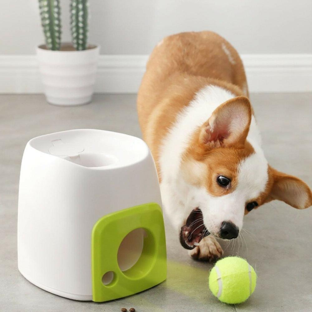 Pet Toy Interactive Training Feeding Thrower