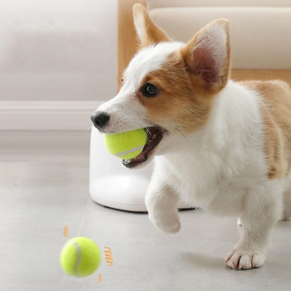 Pet Dog Training Launcher Tennis