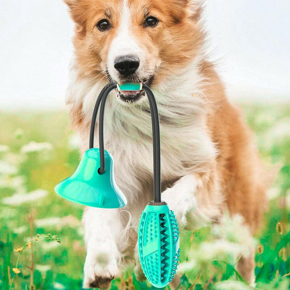 Pet Chew Toy Tug Ball Clean Cup Blue