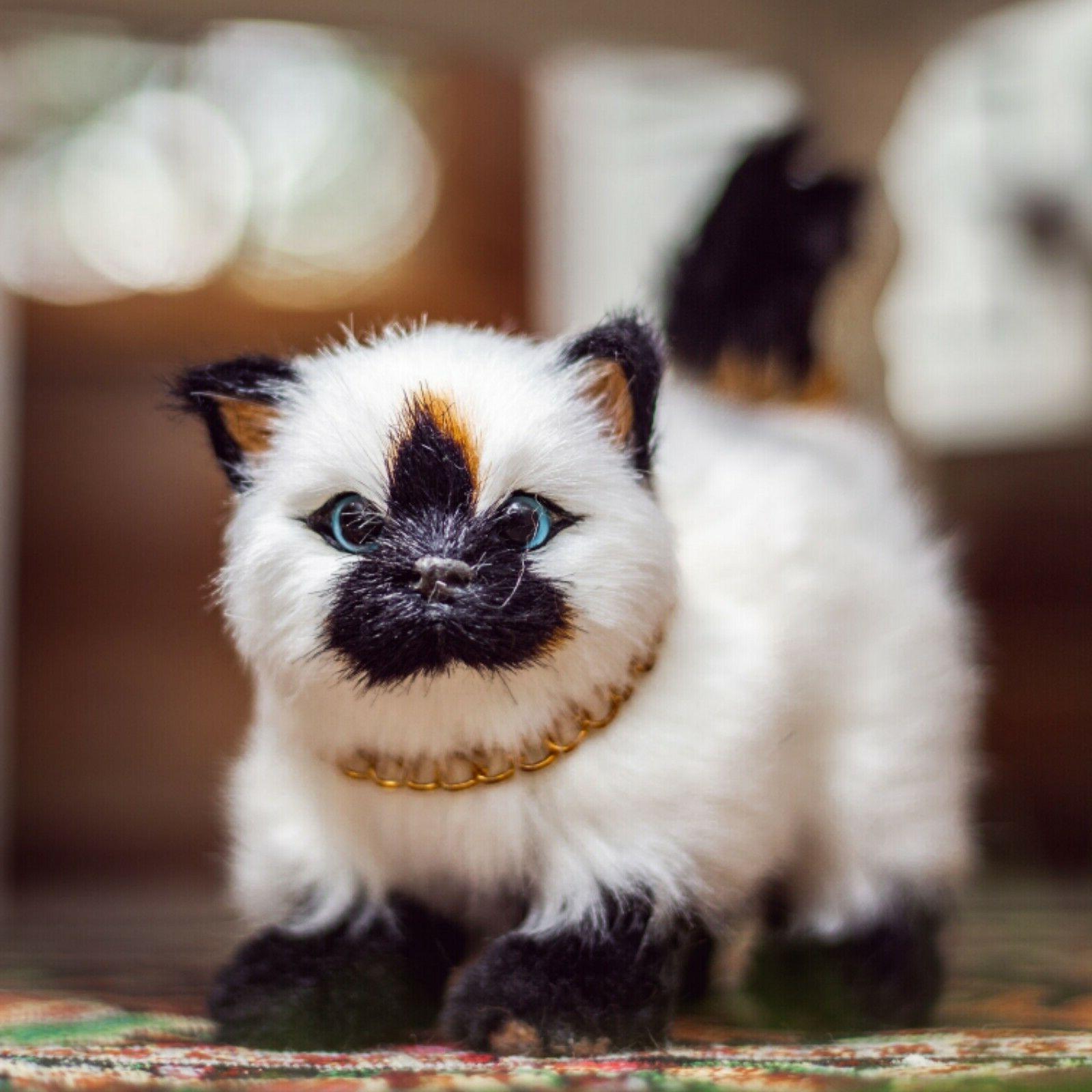 Pets 18 Inch Dolls, Set of Cat American Girl