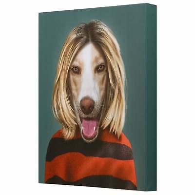Pets Rock Art Wall Art x 16