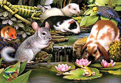 poolside pets a jigsaw puzzle