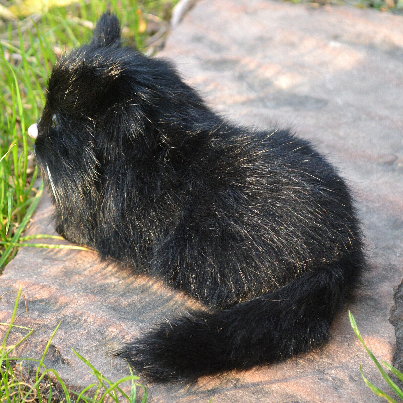 Realistic Black Cat Kitty Furry Animal