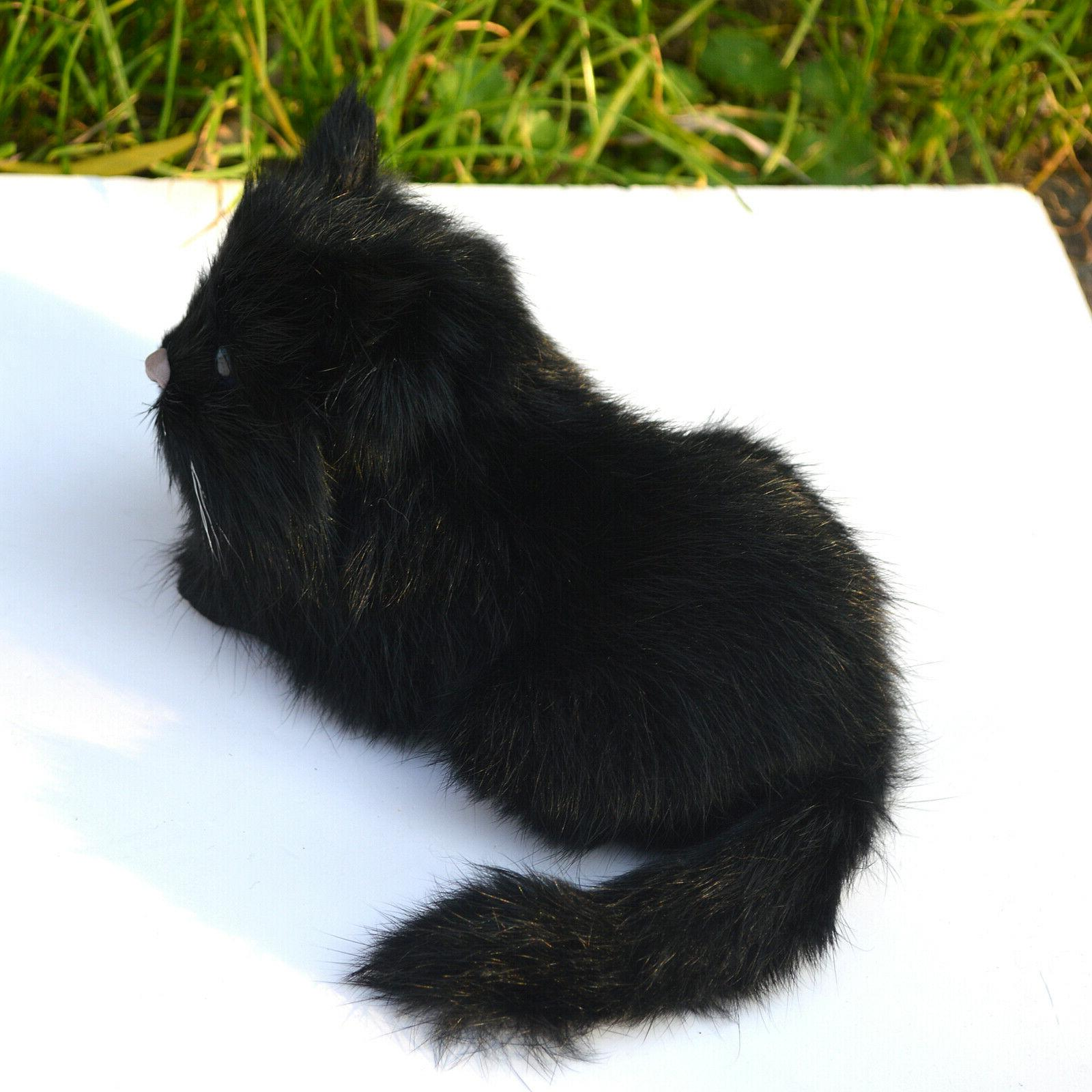 Realistic Cat Kitty Animal