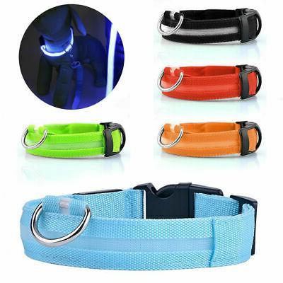safety dog led collar blinking night flashing