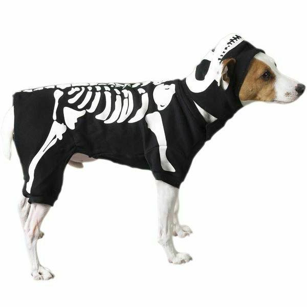 skeleton glow bones dog pet halloween costume