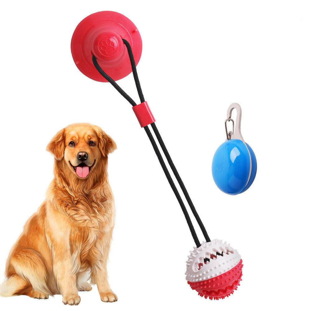 Suction Pet Dog Toy Cleaning & Pet