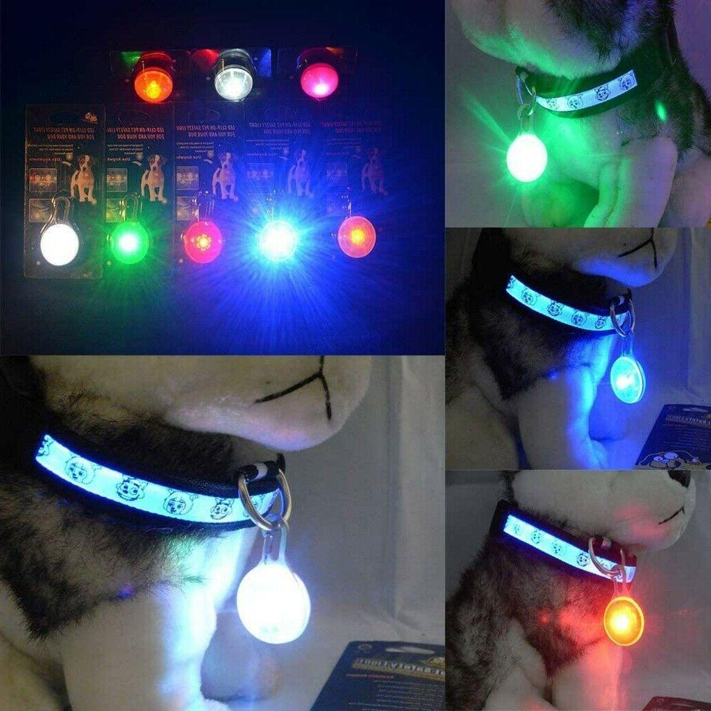 Suction Dog Pet Dog Chew Toy &