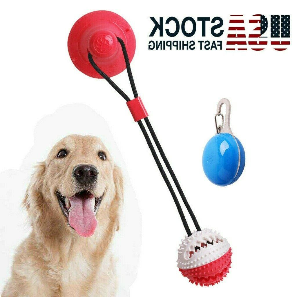 suction cup dog ball pet dog chew